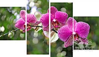 Модульная картина Орхидея № 394 - фото