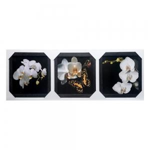 Картина подарочный набор Орхидея TC-166