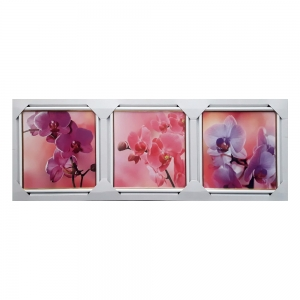 Картина подарочный набор Орхидея TR-10