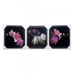 Картина подарочный набор Орхидеи ТС-165